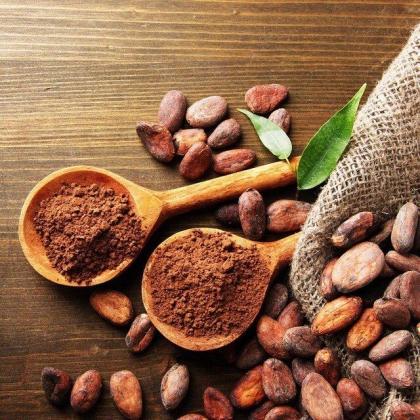 Какао-бобы ферментированные, 250гр THEOBROMA [Пища Богов]